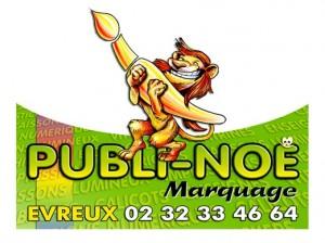 logo-publi-noe1-300x224